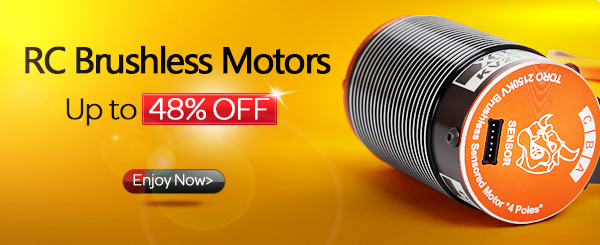 Brushless motor up to 48% off